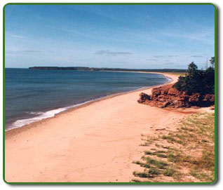 Enjoy our unspoiled private beach. The Cove Beach House PEI.